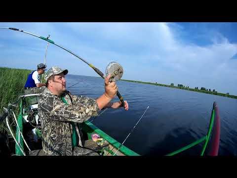 Вопрос: Какая рыба водится в озере Чаны?