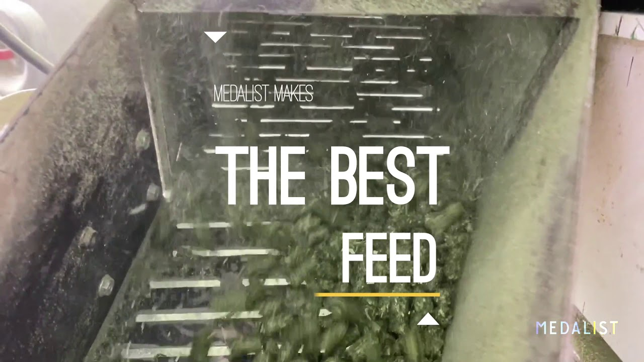 The Best Sprouts Pellets with Alfalfa