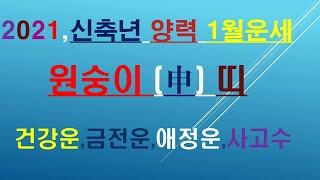 원숭이띠,2021년1월운세, 건강운,금전운,애정운,사고수, 010/4258/8864