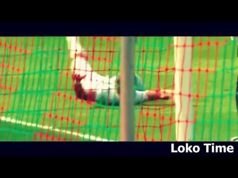 Vedran Ćorluka ● Crazy Moments, Tackles, Fights, Red Cards HD