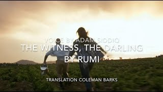 Rumi Poem (English) - The Witness, The Darling