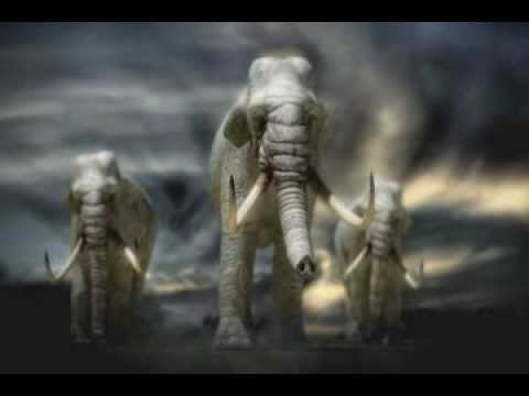 Journey To 10 000 Bc 2008 Youtube