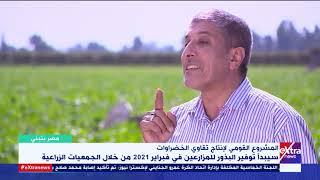 مصر بتبني   تكلفة أقل وإنتاج أعلى..  ما هي مميزات البذور المصرية الجديدة؟