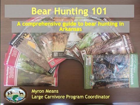 Bear Hunting Video Seminar 2020