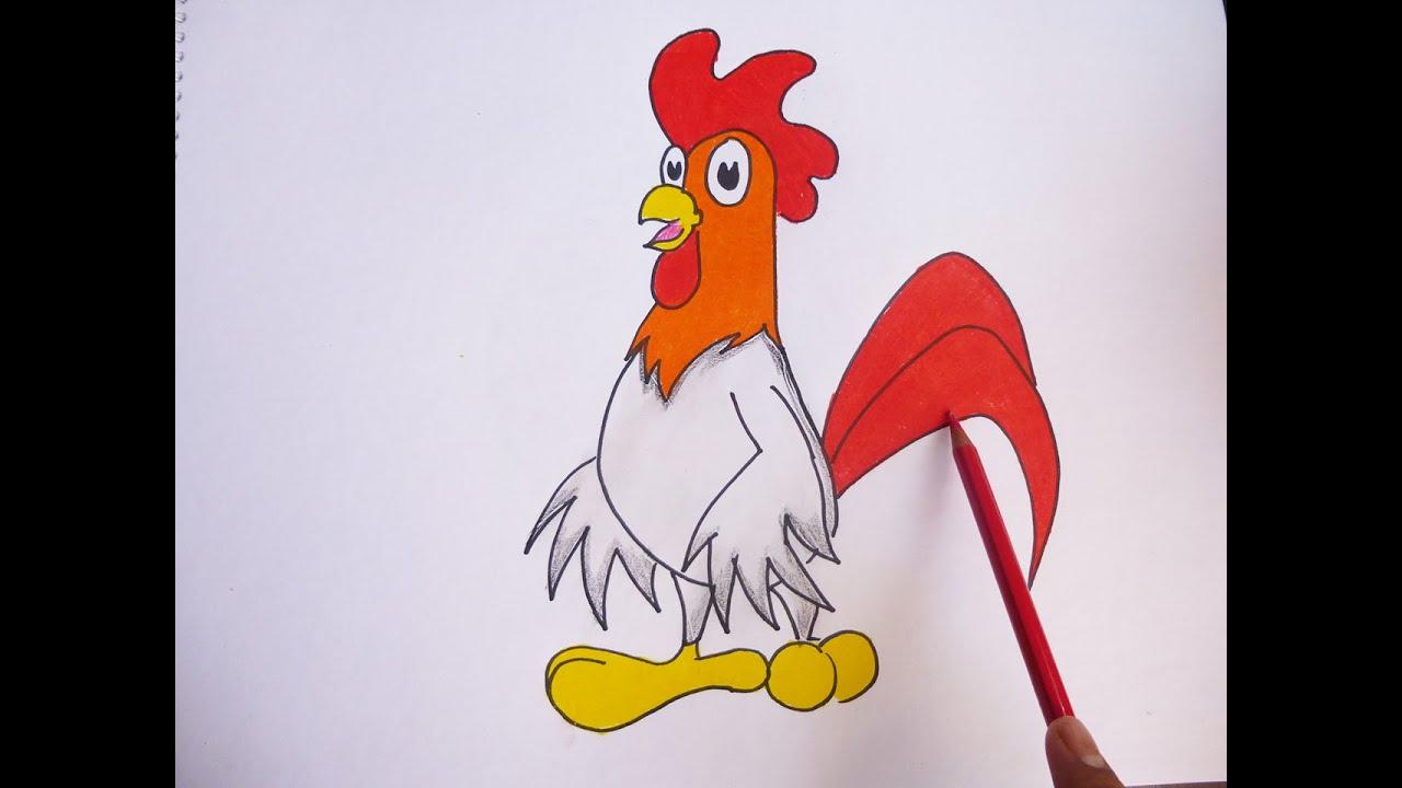 Gallos Coloridos Dibujos Animados: Dibujando Y Pintando A Gallo