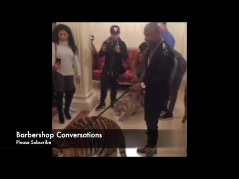 Thumbnail: Floyd Mayweather walking a Pet Tiger like a dog! WUd u Do this?