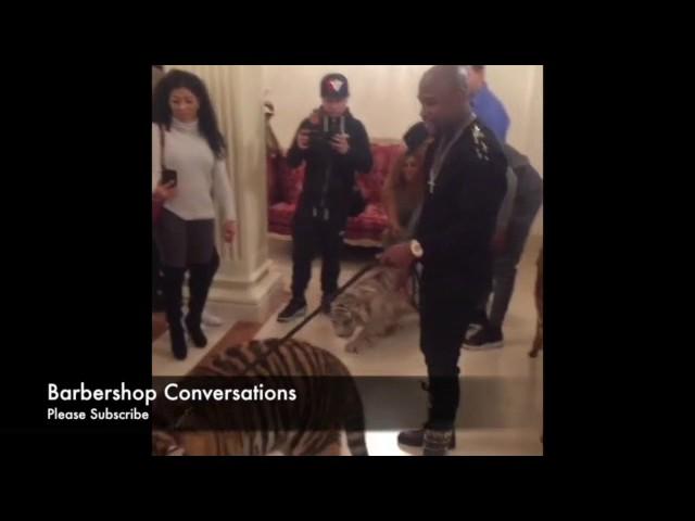 Mayweather llega a su hotel en Moscú con dos tigres