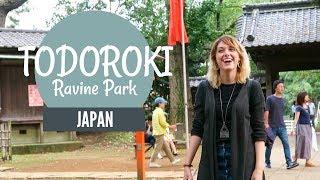 Todoroki Ravine Park// Escape City Life (ft. Kel Preston & Evil Cheesecake)