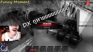 infestation thailand funny moment พ โม ง leser xd ก บ 40 dx ท หายไป