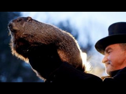 Hotel prices for Groundhog Day more expensive than for Super Bowl