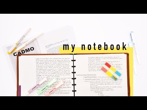 My University Notebook Flip-through // Notes from the 1st Semester