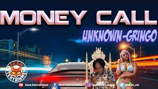 Unknown Gringo - Money Call [Audio Visualizer]