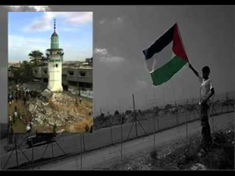 long live palestine.avi