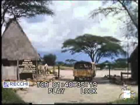 Una strada attraverso Serengeti