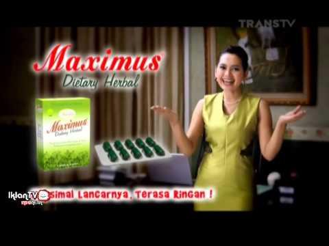 Obat Diet Herbal Maximus