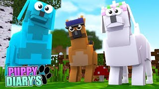 Minecraft PUPPY DIARIES - MEETING OUR NEW NEIGHBOUR LITTLE KELLY!! w/ Sharky