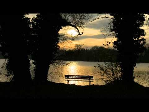 Bate de miezul nopții - Benone Burtescu