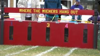 Video Oktoberfest Wiener Dog Races.mpg download MP3, 3GP, MP4, WEBM, AVI, FLV Agustus 2018