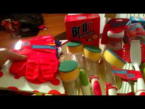 dollar-tree/general-kitchen-cleaning-tools