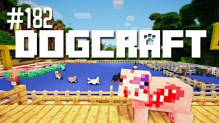 THE DOG SHOW - DOGCRAFT (EP.182)