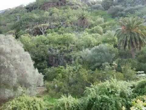 Jardín Botánico Viera y Clavijo ESADECAN.