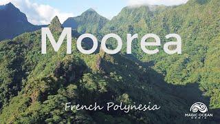 Moorea: Nature Documentary