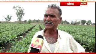 712 : Nashik : Bringel Wangi Success of Rajendra Gaikwad 18:07:2016