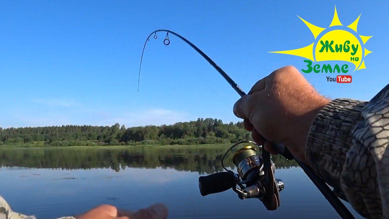 Рыбалка на СПИННИНГ. Показываю окуням РЕЗИНУ из КИТАЯ 👍 Ловля окуня на оснастку ОТВОДНОЙ ПОВОДОК.