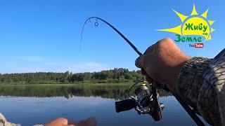 Рыбалка на СПИННИНГ. Показываю окуням РЕЗИНУ из КИТАЯ