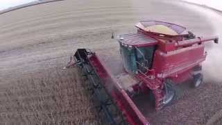 case ih 2388 cutting beans view from dji quadcopter