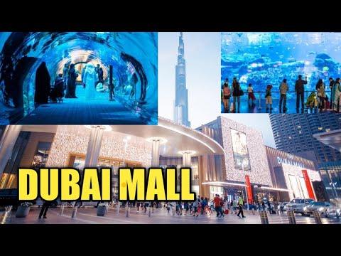 DUBAI MALL BURJ KHLIFA Sharks Dubai Aquarium Underwater Zoo | India Favourite dubai aquarium