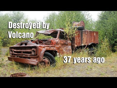 What I found on Mt. St. Helens 37 years after the eruption