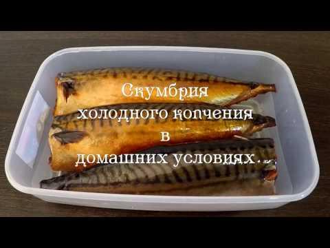 Рыба палтус: вред и польза -