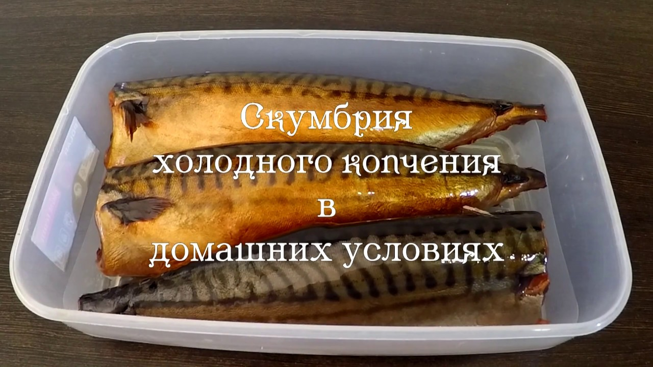 скумбрия копченая в домашних условиях рецепт с фото