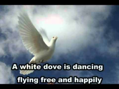 White Dove, Fly High--Casting Crowns  with lyrics