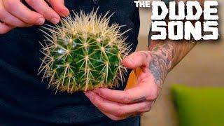 Impossible Cactus Hacky Sack Challenge!