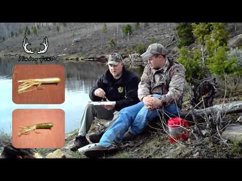 Fishing Tips for Strawberry Reservoir
