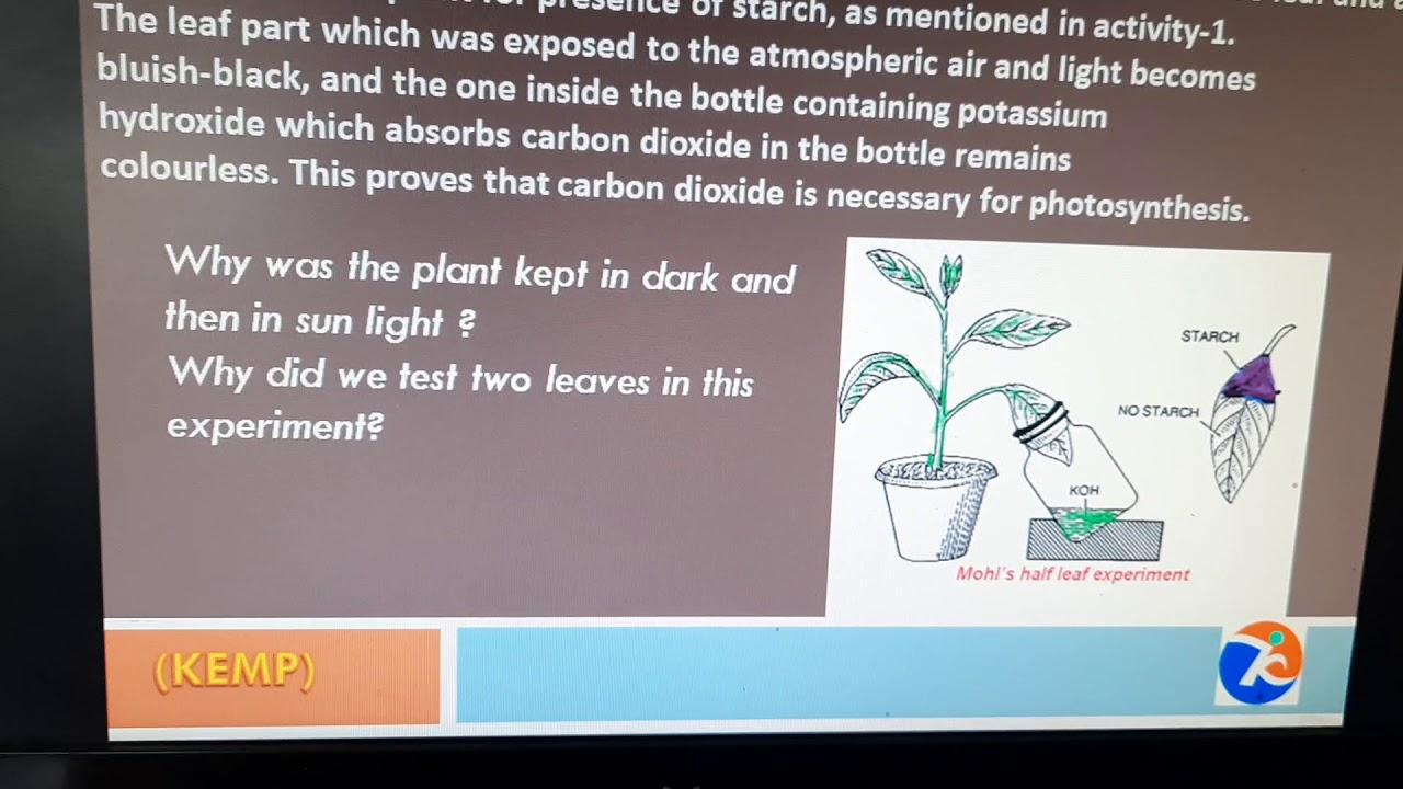 how is carbon dioxide used in photosynthesis