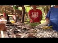 High Holiday Prices Did Not Come Down Fish is Even Higher Now Philippines Expat Foreigner