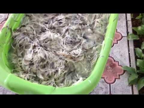 Как постирать подушки из пера в домашних условиях