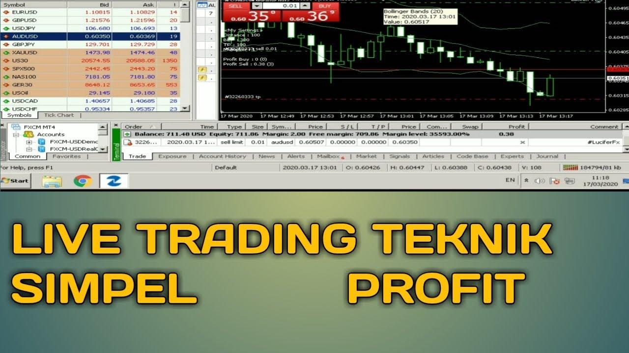 panduan trading forex pemula