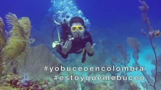 VIVE DE NUEVO EL BUCEO EN COLOMBIA  - FEDECAS