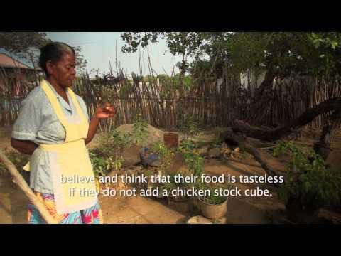Afrocolombian Tales of Food Plants