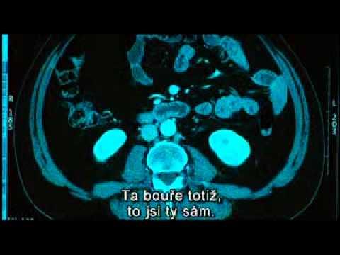 Biutiful (cz trailer)