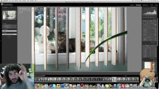 Photography Tutorial - Shutter Speed