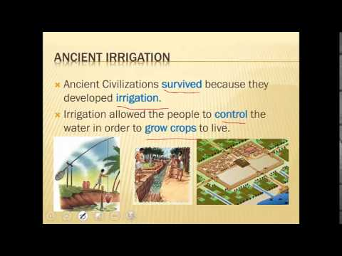 Ancient Egypt and Mesopotamia Review