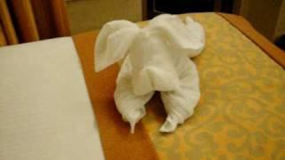 Carnival Splendor Room Steward Making A Towel Dog