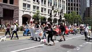 San Francisco Pride Parade 2012 Muttville Senior Dog Rescue
