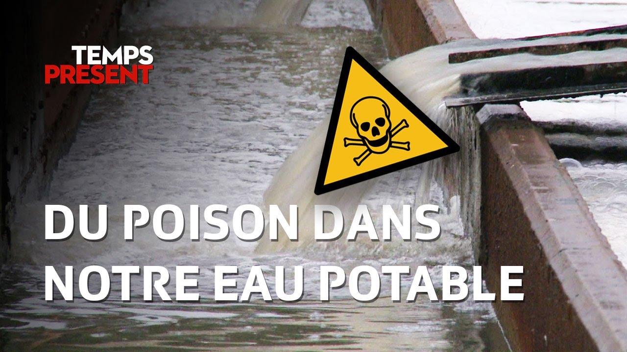 Du poison dans notre eau potable   Temps Présent