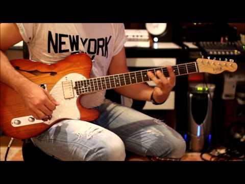 Paveza guitars Telecaster Thinline clean